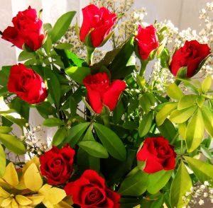 bukiet czerwonych roz